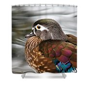 Wood Duck Hen Shower Curtain