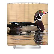 Wood Duck I Shower Curtain