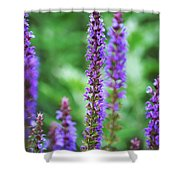 Wood Sage Shower Curtain