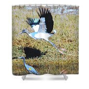 Wood Stork And Blue Heron Shower Curtain