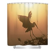Wood Stork Collecting Nesting Material Shower Curtain