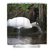 Wood Stork In The Swamp Shower Curtain