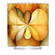 Wood Study 01 Shower Curtain