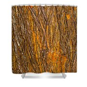 Wood Texture 3 Shower Curtain