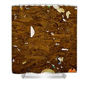 Wood Texture Shower Curtain