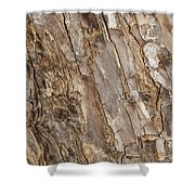 Wood Textures 4 Shower Curtain