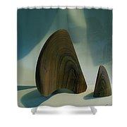 Wood Zen Harmony Shower Curtain