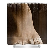Wooded Belly Shower Curtain