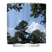 Wooded Forest  Shower Curtain