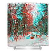 Wooded Path - Use Red And Cyan Filtered 3d Glasses Shower Curtain