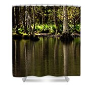 Wooded Reflection Shower Curtain