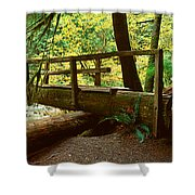 Wooden Bridge In The Hoh Rainforest Shower Curtain