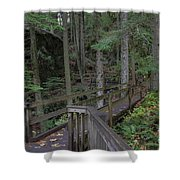 Wooden Forest Trail  Shower Curtain