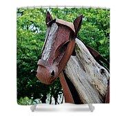 Wooden Horse20 Shower Curtain