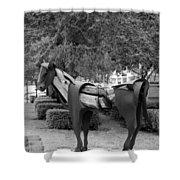 Wooden Horse6 Shower Curtain