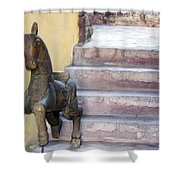 Wooden Horses 2 Shower Curtain