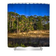 Woodland And Marsh Shower Curtain by Marvin Spates