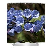 Woodland Blue Shower Curtain