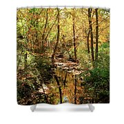 Woodland Brook  Shower Curtain