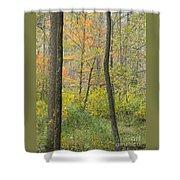 Woodland Interior Shower Curtain