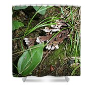 Woodland Secret Garden Shower Curtain