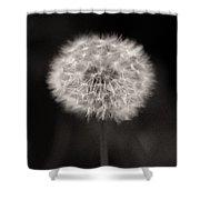 Woodland - Study 5 Shower Curtain