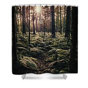 Woodland Trees Shower Curtain