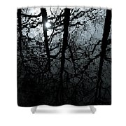 Woodland Waters Shower Curtain