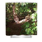 Woodlands Shower Curtain