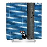 Woodpecker Column Shower Curtain