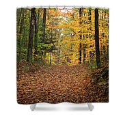 Woods 2 Shower Curtain