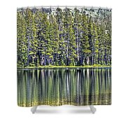 Woods Lake 4 Shower Curtain