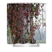 Woodvine Shower Curtain
