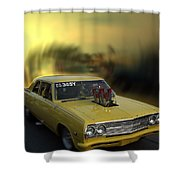 Woodward Ave Michigan Shower Curtain