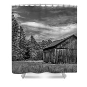 Woody    7d06977 Shower Curtain