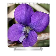 Woody Blue Violet Shower Curtain