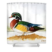 Woody On The Lake Shower Curtain