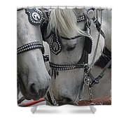Working Horses Shower Curtain