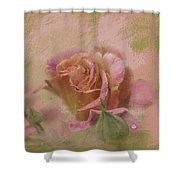 World Peace Roses With Texture Shower Curtain