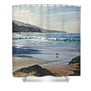 Worth A Thousand Steps Shower Curtain