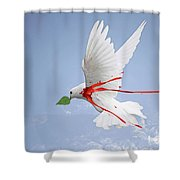 Wounded Peace 2 Shower Curtain