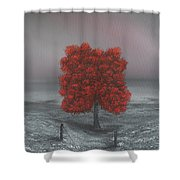 Wrapped In Red Shower Curtain