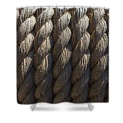 Wrapped Up Tight Shower Curtain