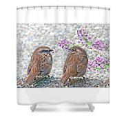 Wren Bird Sweethearts Shower Curtain