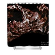 wudu 2 XXI Shower Curtain