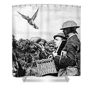 Wwi Releasing British Carrier Pigeon Shower Curtain