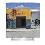 Wynwood Series 20 Shower Curtain