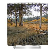 Wyoming Gold Shower Curtain