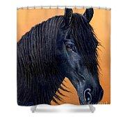Wytse Shower Curtain by Jurek Zamoyski