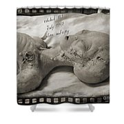 X File Evidence Collector Art Shower Curtain